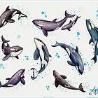 """""""Orca Pod in Aquarell"""" von Amber Marine, Killerwal-Kunst, © 2019 von Amber Marine ~ Wildlife Artist ~ © 2004-2019"""