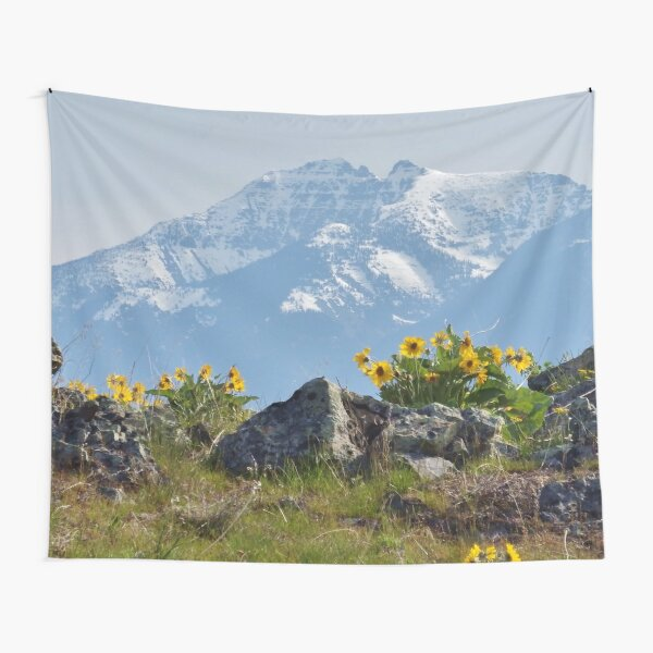 Mission Mountains Balsamroot Tapestry