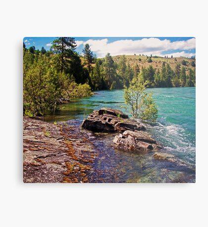 Lower Flathead River Metal Print