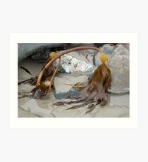 Uncovered By The Tide- Lyme Dorset UK Art Print