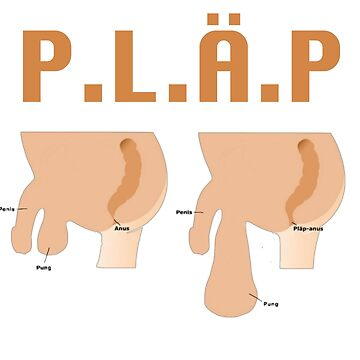 P.L.Ä.P by NyheternaSE