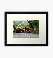 Rural Ireland Framed Print