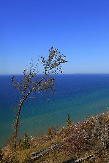 Lake Michigan Beauty by Renee Blake