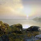Dreamy Land by Igor Zenin