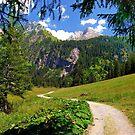 Lauenensee, Switzerland by Nigel Fletcher-Jones