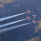 Patrouille Suisse - Northrop F-5E Tiger II by Ted Lansing