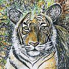 Tiger by Kurt Rotzinger