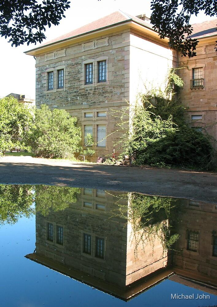 Puddle Reflection by Michael John