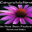 Petals and Pollen Banner by Kathleen Jones