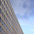 Windows by Rees Adams