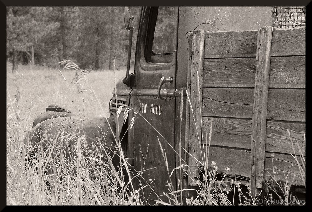 Old Work Truck Sitting In A Field by OneRudeDawg