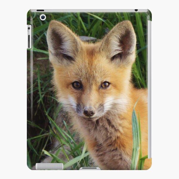 Curious Kit iPad Snap Case