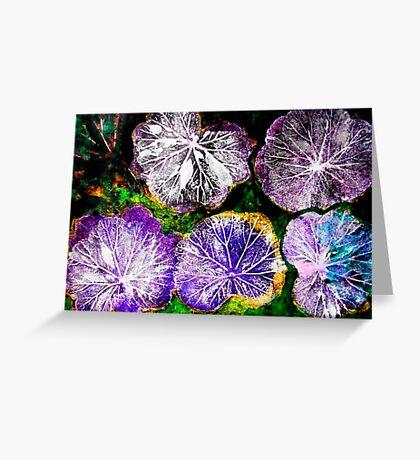 Novembers Garden 7 - Monoprint Greeting Card