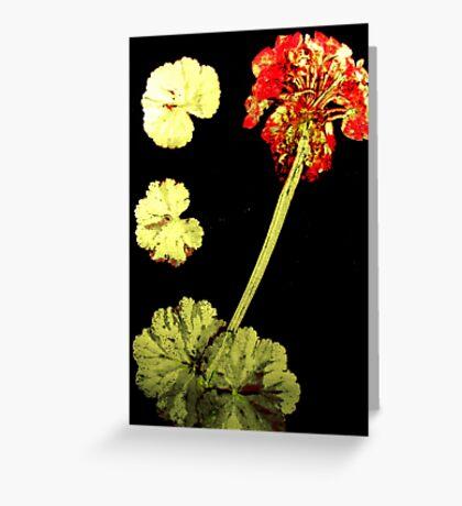November's Garden 8 - Monoprint Greeting Card