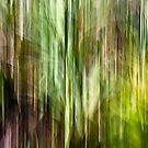 Pandanus dreaming #01 by LouD