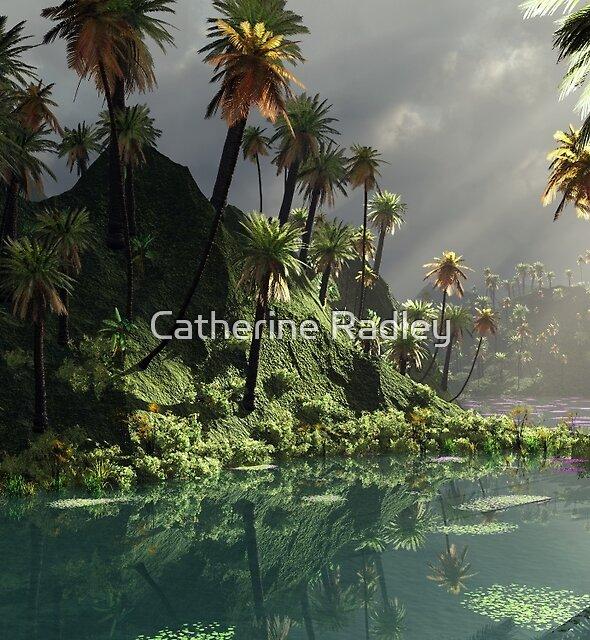 Through The Monsoon by Catherine Radley (Liversidge)