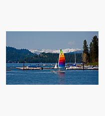 Spring sailing Photographic Print