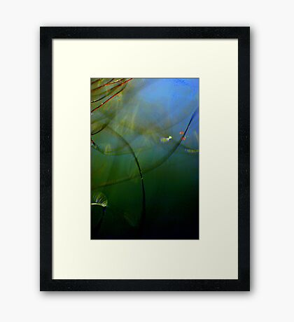 Under the Sea Macro World Framed Print