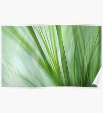 dancing grasses Poster