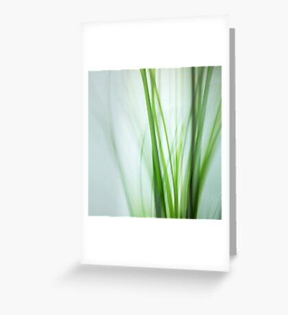 green whispers Greeting Card