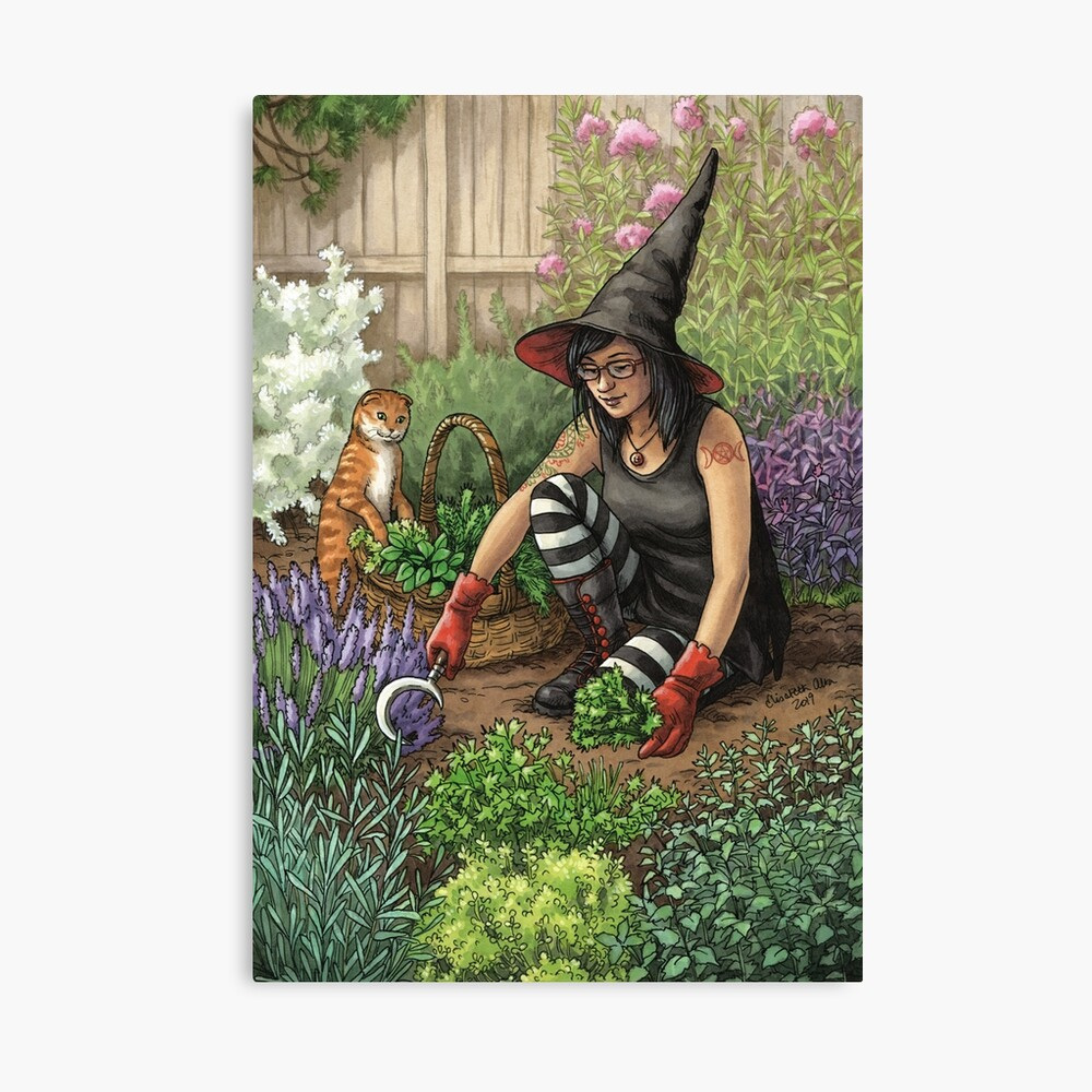 Everyday Witch Oracle - Seasonal Harvest Canvas Print
