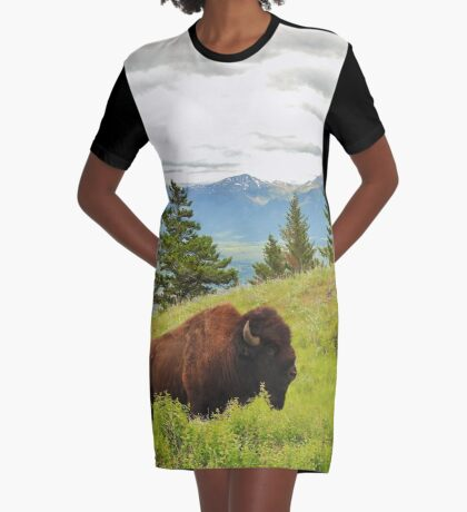 Spring Bison Graphic T-Shirt Dress