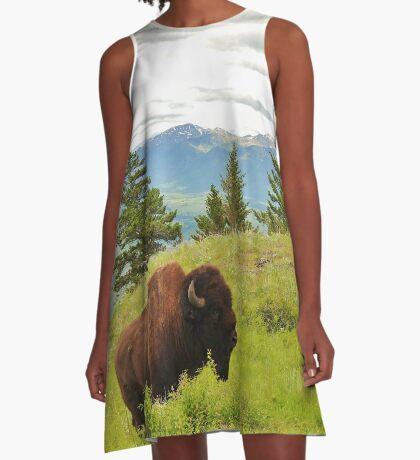 Spring Bison A-Line Dress