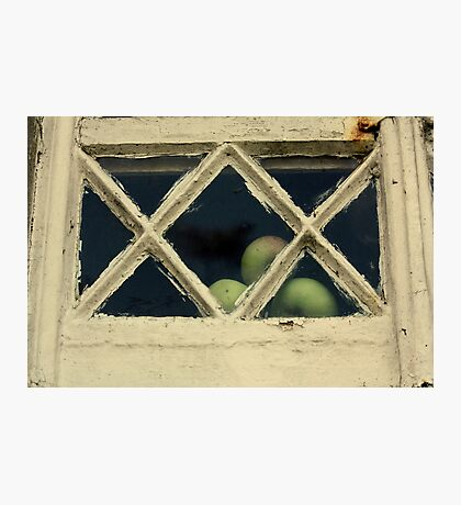 Neat Apples Photographic Print