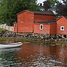 Brigus Newfoundland, Canada by Raymond J Barlow