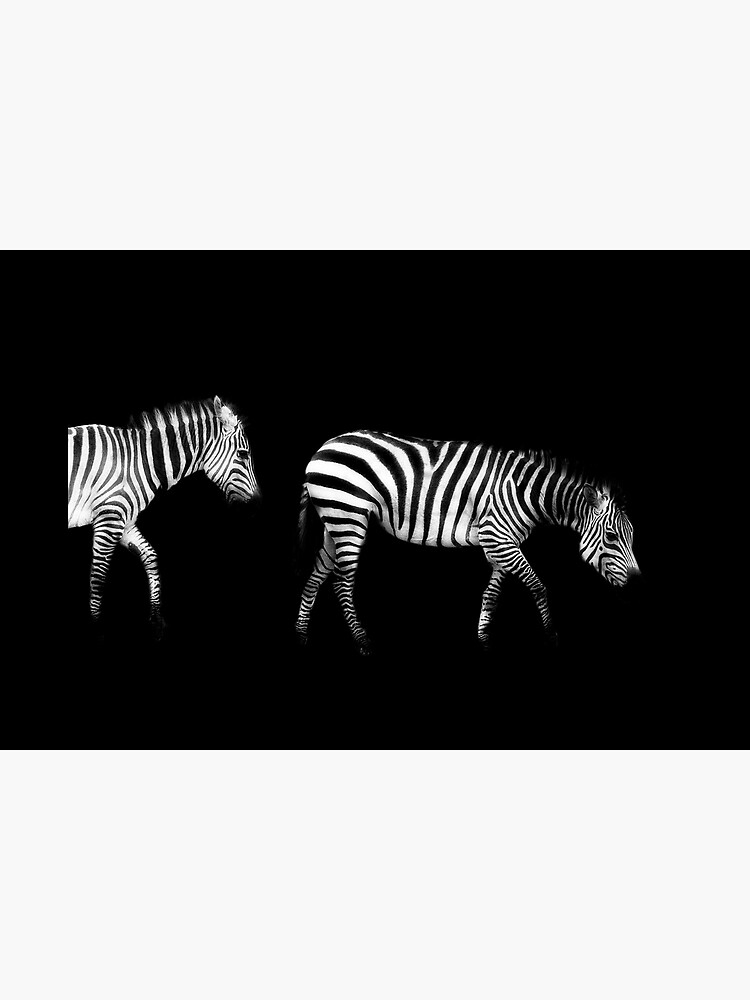 Double Zebra Drama by KayBrewer