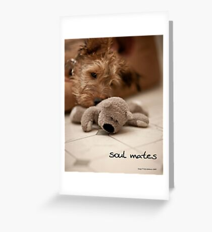 Soul mates Greeting Card
