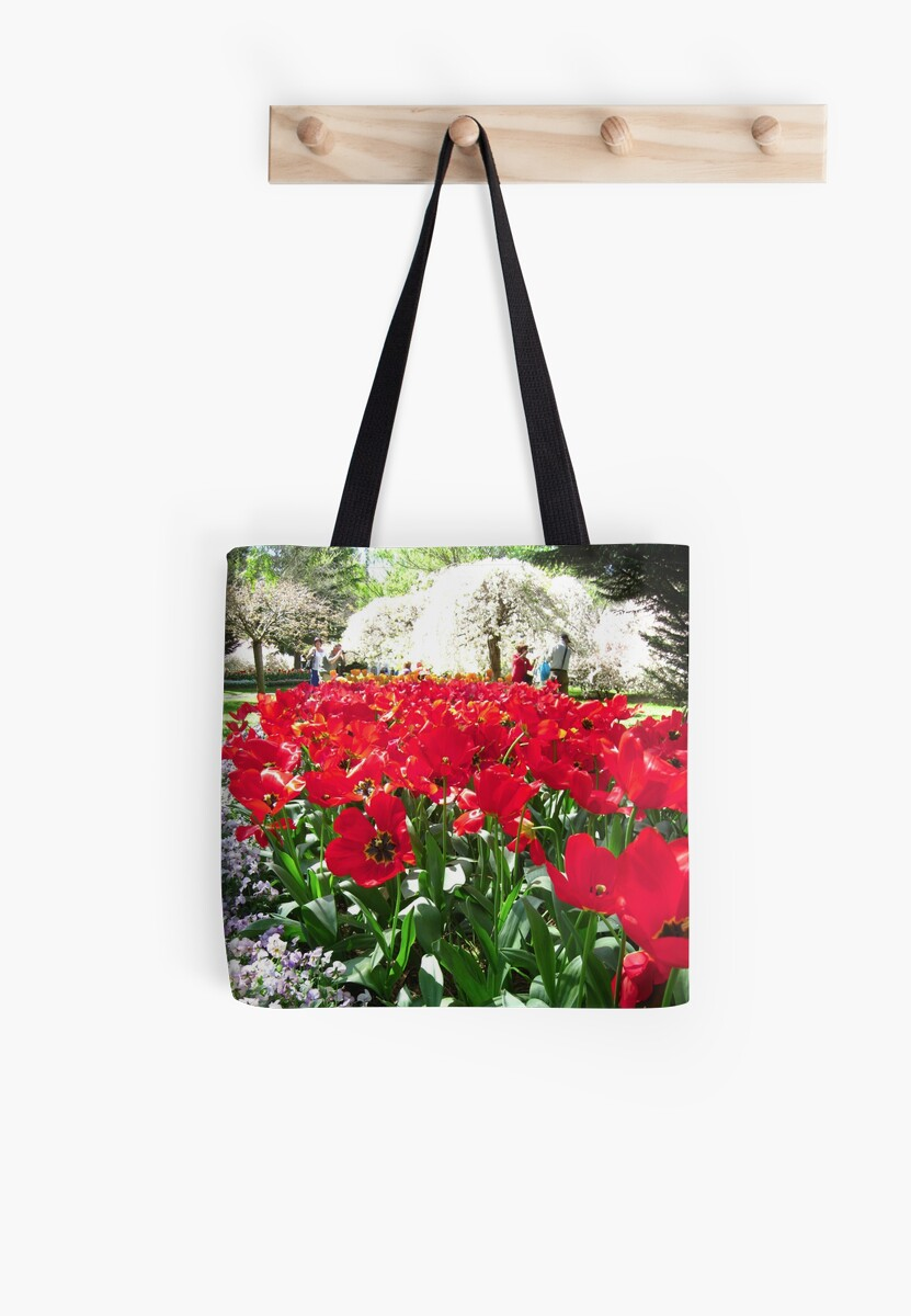 Tulip Time in Canberra Australia 12  by Heatherian
