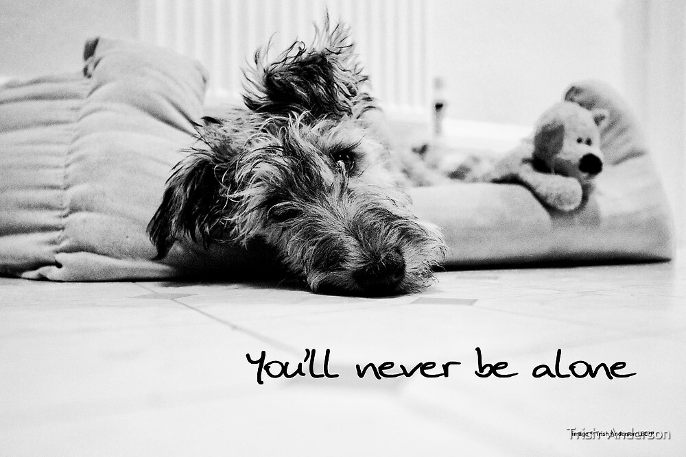 Never be alone by Trish  Anderson