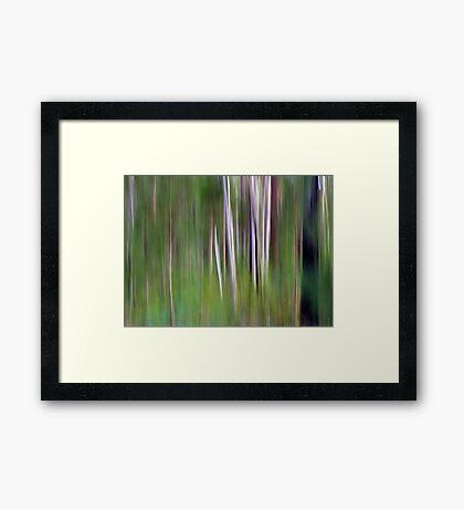 The Natives Framed Print