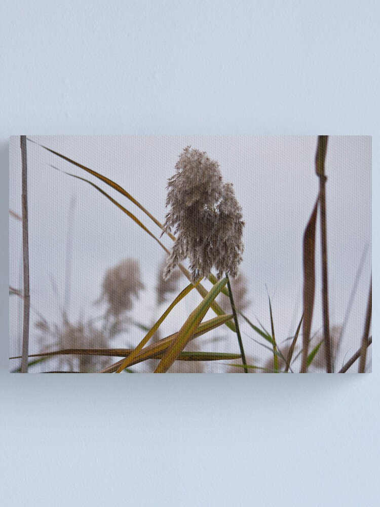 Alternate view of Tall Grass in Autumn Canvas Print