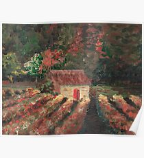 Provence Vineyard Poster