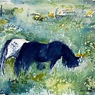 Ponies in the Meadow watercolour by CheyAnne Sexton by CheyAnne Sexton