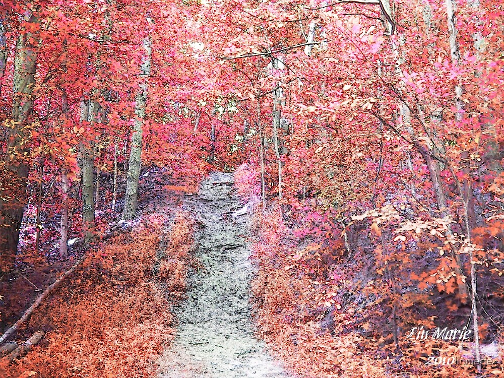 Path way too Immortality by linmarie