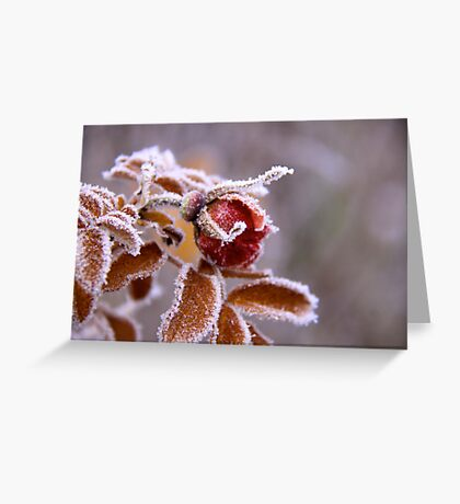 Winter jewel Greeting Card