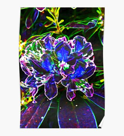 A Psychedelic Rhododendrum Poster