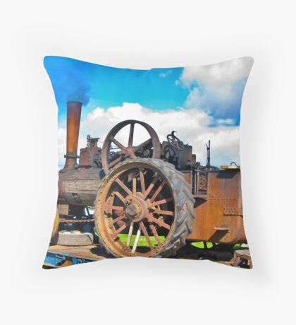 In Need of Preservation Throw Pillow