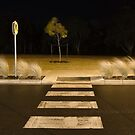 Zebra Crossing by Mick Kupresanin