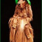 Irish Charmer by Ann J. Sagel