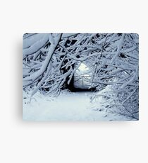 AND THEN IT SNOWED&SNOWED&SNOWED! Canvas Print