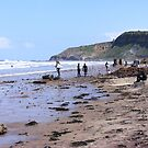 Surfers at Cayton Bay, Yorkshire by Rees Adams