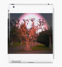 Pleno Invierno.... iPad Case/Skin