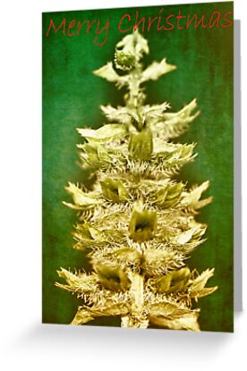 Big tree in a small world (Christmas card) by Caterpillar