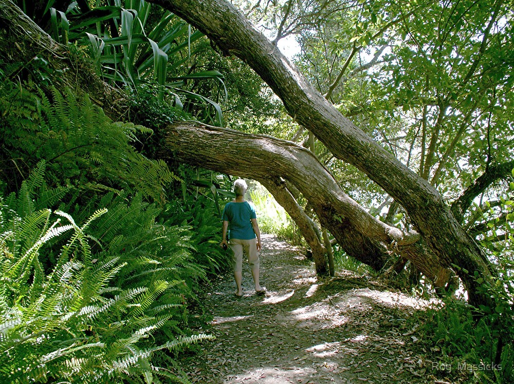 Hobbit - a fleeting glimpse. by Roy  Massicks