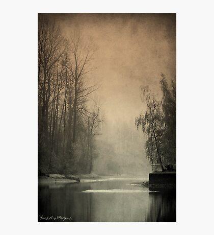 Passages of  Everglades Photographic Print