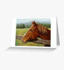 Chestnut Mare-A Country Girl Greeting Card